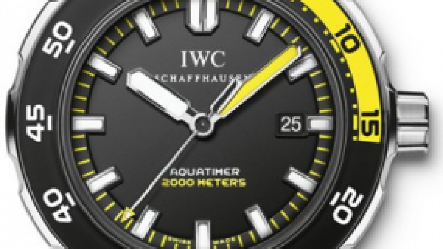 Black Elegant 44mm IWC Automatic 2000 Replica Watches Sale For Men